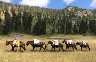 Explore Montana