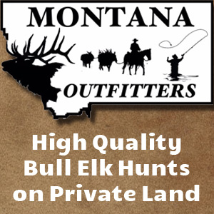 Montana Backcountry Outfitters (Bull Elk)